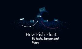 How Fish Float