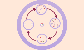 Protoplaste