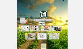 Copy of  Modelo Institucional Para Prevenir y reducir las Infeccione