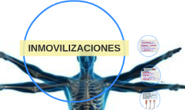 Copy of INMOVILIZACIONEES