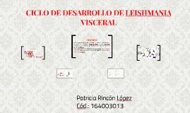 CICLO DE DESARROLLO DE LEISHMANIA