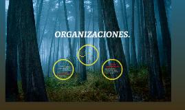 ORGANIZACIONES.