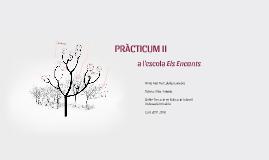 PRÀCTICUM II