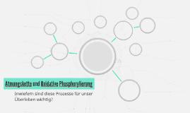 Atmungskette und Oxidative Phosphorylierung
