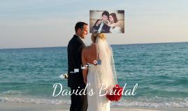 David's Bridal Media Proposal