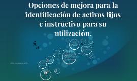 Opciones de mejora para la identificación de activos fijos e