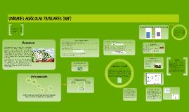 Copy of UNIDADES AGRÍCOLAS FAMILIARES (UAF)
