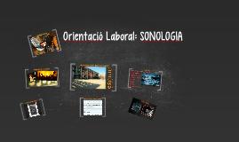 Orientació Laboral: SONOLOGIA
