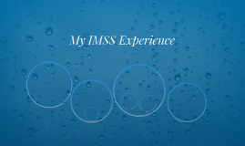 My IMSS Experience
