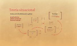 Teoría situacional