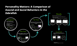 Personality Matters: A Quantitative Comparison of Asocial an