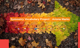Symmetry Vocabulary Project	 Ariona Marks