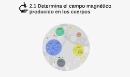 2.1 Determina el campo magnético producido en los cuerpos