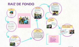 RAIZ DE FONDO
