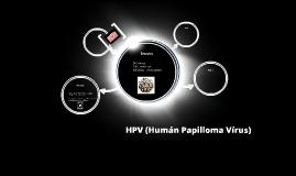 HPV (Humán Papilloma Vírus)