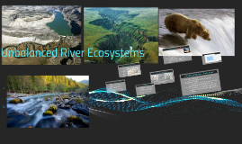 Long Term Effects On Rivers