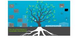 Clase 10 - El rol de las empresas en el Desarrollo Sostenible