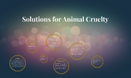 Solutions for Animal Cruelty