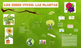 """""""Los Seres vivos: las plantas""""."""