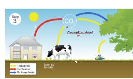Carbonkredsløbet