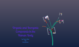 Copy of Organic and Inorganic Compounds in the Human Body