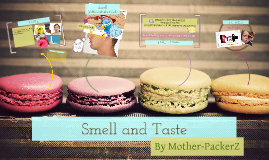 Smell and Taste