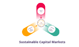 Sustainable Capital Markets