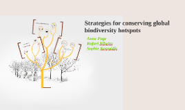 Strategies for conserving global biodiversity hotspots
