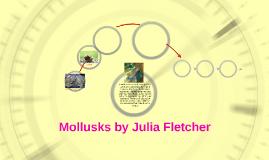 Mollusks!