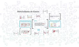 Metabolismo de hierro