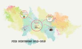 Peer Mentoring 2018-2019