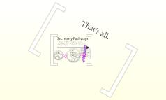 secretary pathways