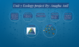 Unit 7 Ecology project By: Anagha Anil