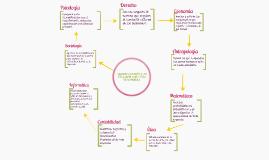 Copy of Administración en relación con otras disciplinas