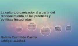 La cultura organizacional a partir del reconocimiento de las prácticas y políticas instauradas.