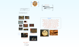 Copy of Cookie Chemistry