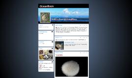 OceanBook