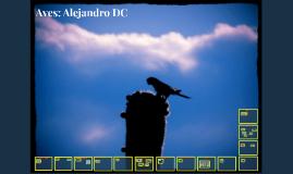 Aves: Alejandro DC
