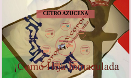 CETRO AZUCENA