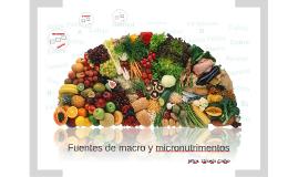 PNCA6-Fuentes de macro y micronutrimentos