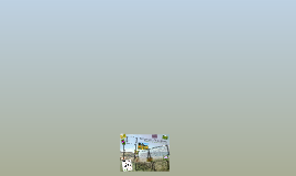 Copy of Temperate Grassland