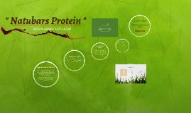 """ Natubars Protein """