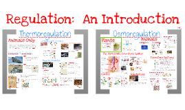 AP Bio- Physiology 5: Thermoregulation & Osmoregulation