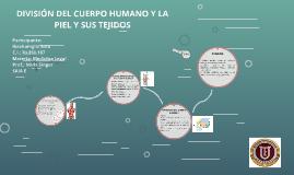 DIVISIÓN DEL CUERPO HUMANO Y LA PIEL Y SUS TEJIDOS