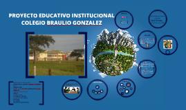 PROYECTO EDUCATIVO INSTITUCIONAL COLEGIO BRAULIO GONZALEZ