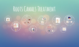 Roots Canals Treatment