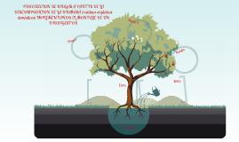 PRODUCCION DE BIOGAS A PARTIR DE LA DESCOMPOSICION DE LA BIOMASA (residuos orgánicos domésticos) IMPLEMENTANDO EL MONTAJE DE UN BIODIGESTOR