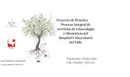 Proyecto De Practica Final