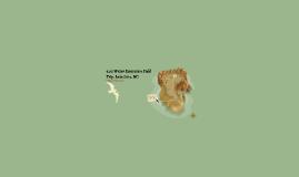 4.02 Water Ecosystem Field Trip: Lake Lure, NC
