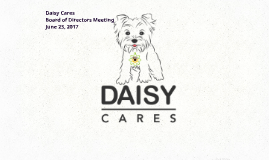 Daisy Cares BOD Meeting June 23 2017